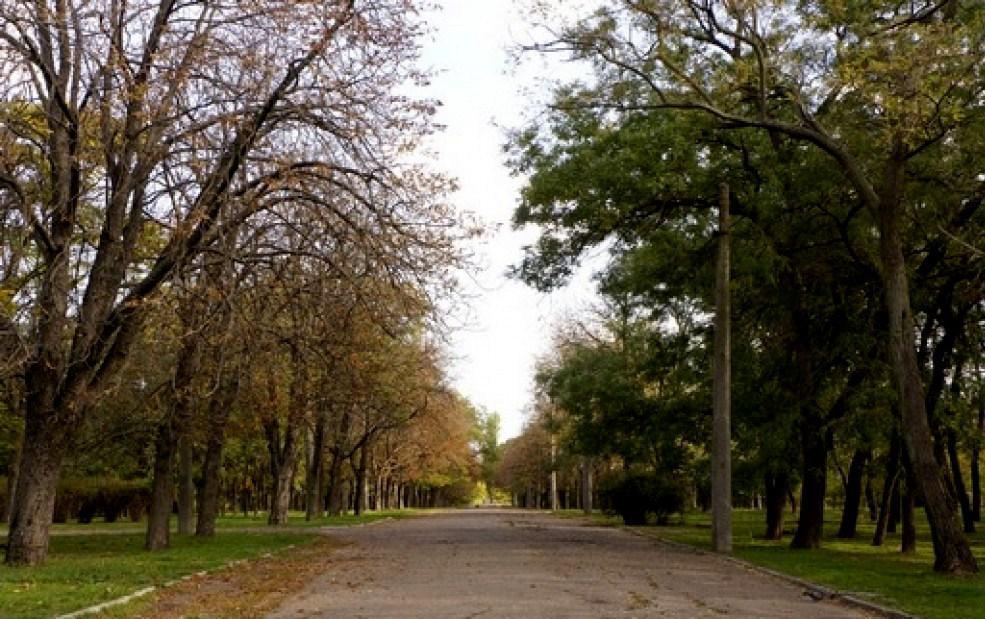 парк Савицкий