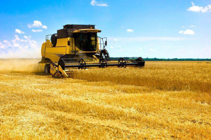 уборка ранних зерновых культур