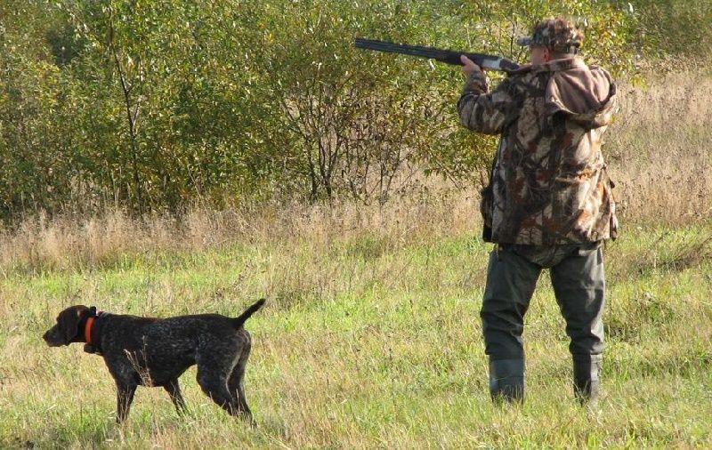стрельба во время охоты