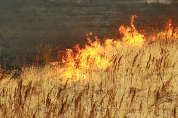 пожар, Одесская область