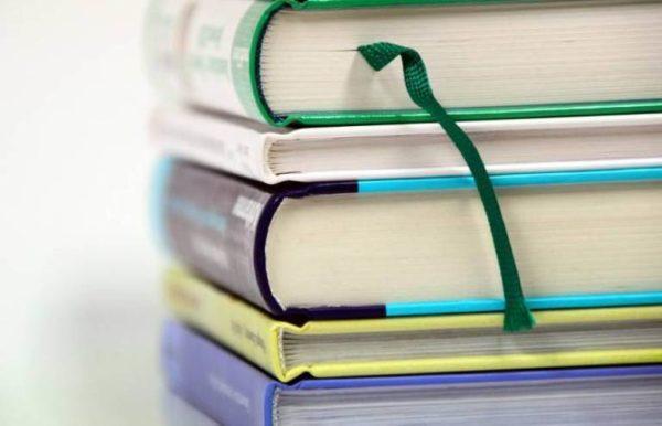 В Рени школы получили учебники на молдавском языке, в то время, когда катастрофически  не хватает украиноязычных