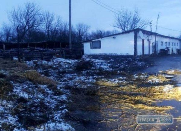 В Рени случился крупный  пожар, сгорело 15 тонн сена