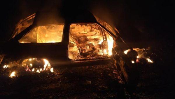 У мужчин, которые незаконно рубили лес в Одесской области, сгорела машина