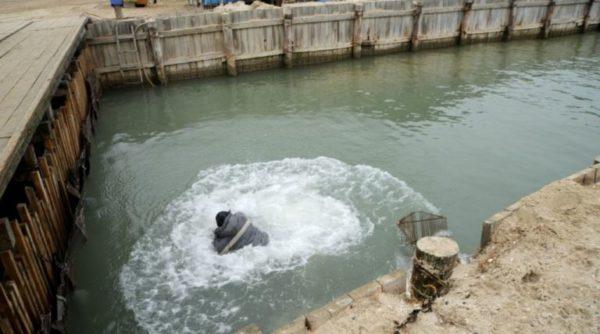 Замдиректора Нацпарка «Тузловские лиманы» искупал браконьера в канале(фото)