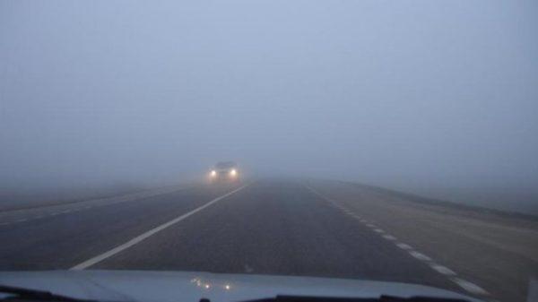 Густой туман создаст проблемы на дорогах Одесской области
