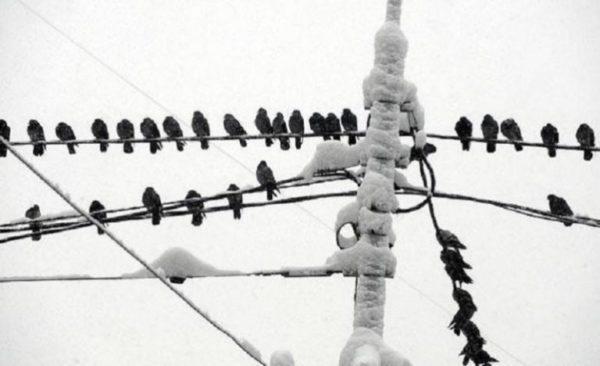 27 января, без света остались больше 40 населенных пунктов Одесской области