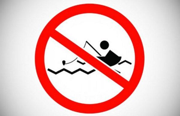 С 15 февраля в Черном море и причерноморских лиманах запрещается вылов камбалы