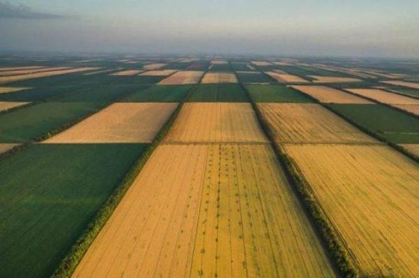 В Украине хотят разрешить продажу земли через интернет