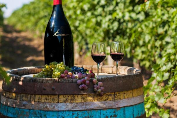 Бессарабские виноделы нуждаются в поддержке
