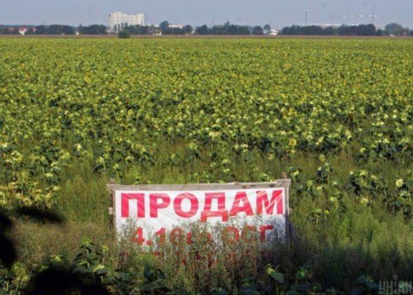 Обычный украинец не сможет получить землю, когда заработает рынок земли