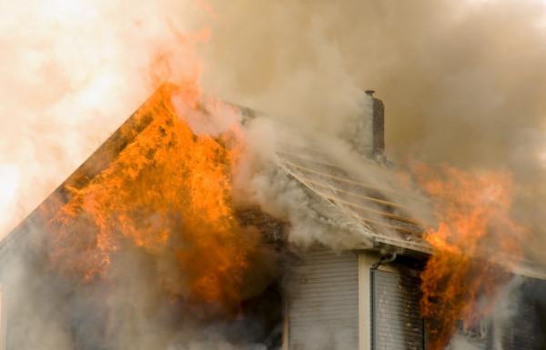 В селе Павловка Болградского района при пожаре погибло около 50 животных