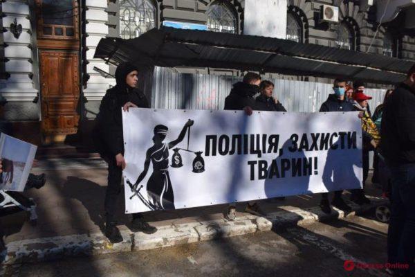 В Одессе состоялся митинг против насилия над животными