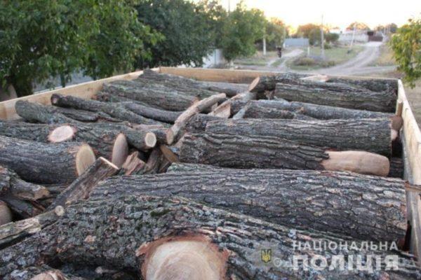 В Татарбунарах двое жителей совершали незаконную перевозку леса