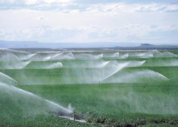 Проект по модернизации  оросительной системы стартовал в Одесской области