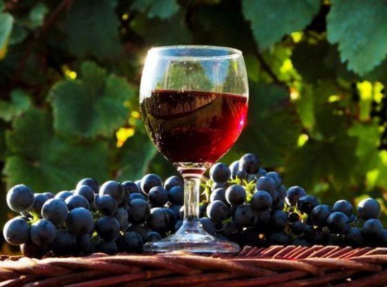В Одесской области начался кризис в сфере виноделия