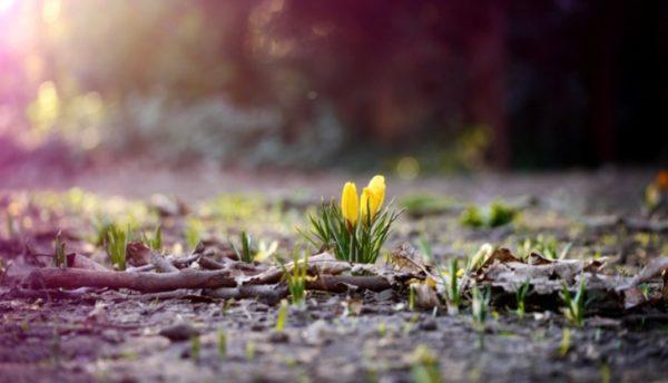 В Украину идет похолодание – в каких регионах сохранится тепло