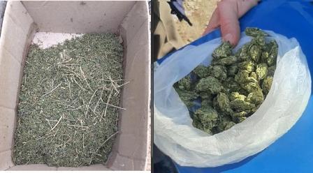 Жителей Болградского района  привлекут к ответственности за хранение наркотиков