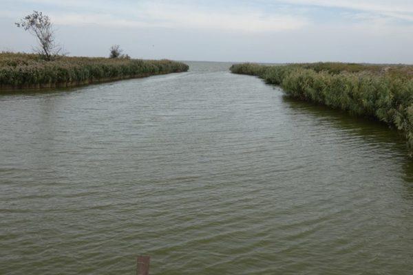 В Килийском межрайонном управлении водного хозяйства объяснили, почему на его водных объектах запрещена любительская рыбалка