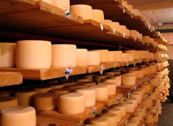 Лучшая сыроварня Болградского района станет участником фестиваля сырного мастерства ProCheese Awards
