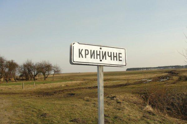 Село Криничное может превратиться в малую столицу Украины