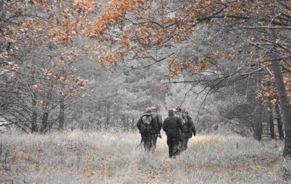 Количество охотничьих животных сократилось в Одесской области