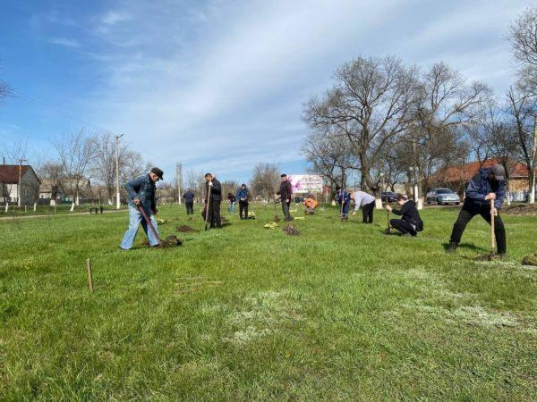 Всеукраинская акция «За чисте довкілля»: в Арцизе высадили 200 саженцев дуба