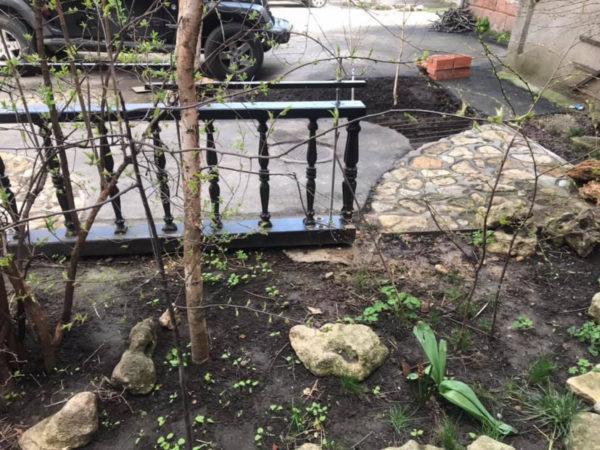 Одесситка подала на соседа в суд за то, что он высадил во дворе цветы и деревья