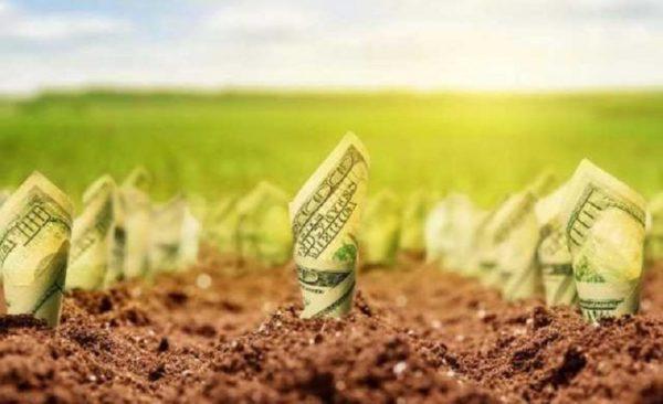 Большинство жителей юга Украины против продажи земли сельхозназначения