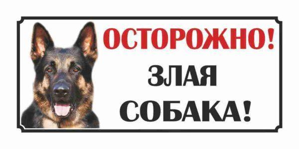 Жителей Арцизской громады просят предупреждать о наличии собак во дворах