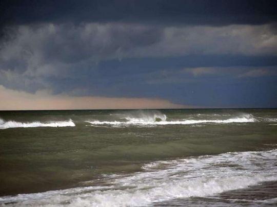 В Одессе море «зацвело» токсичными бактериями