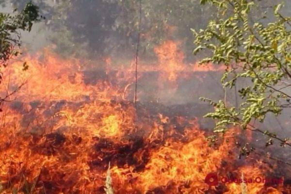 Одесская область: спасатели предупреждают о чрезвычайной пожарной опасности