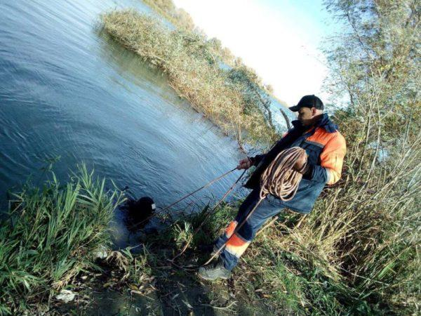 Спасатели двое суток разыскивают рыбака в Одесской области