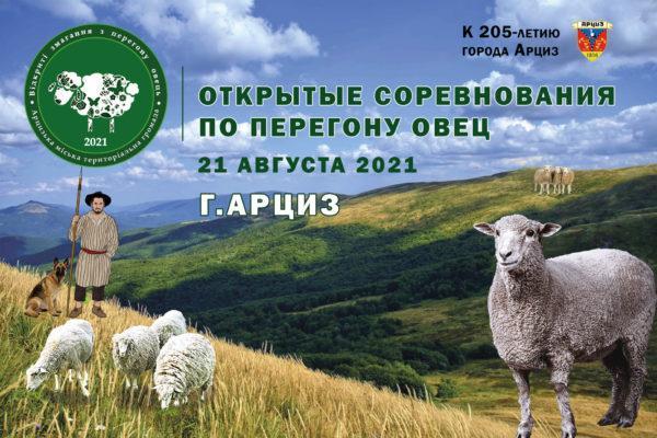 В Арцизе анонсировали проведение необычного соревнования всеукраинского масштаба