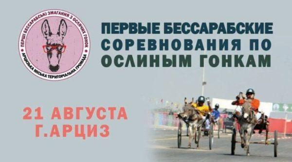 """Первые ослиные гонки в Арцизе соберут извозчиков со всей Украины, где выберут самого """"гламурного"""" ослика"""