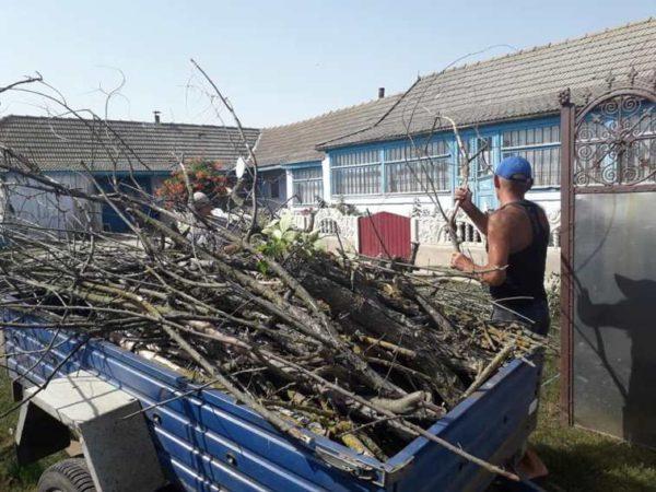 В Арцизской громаде нуждающихся снабдят дровами