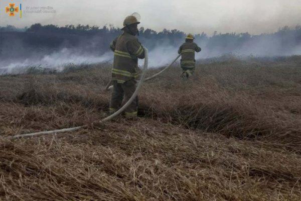 Ударом молнии было уничтожено 7 Га пшеницы в Одесской области