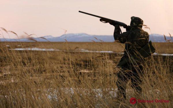 Охотников Одесской области предупредили об угрозе африканской чумы свиней и птичьего гриппа