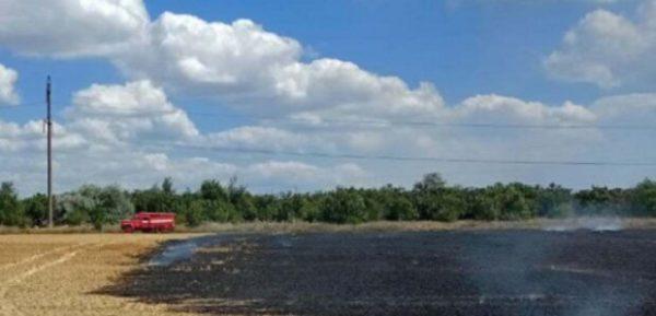 В Одесской области объявили чрезвычайный уровень опасности из-за пожаров