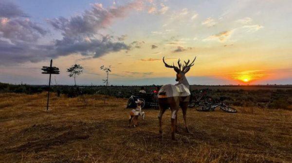 В Измаиле место для любования закатами и рассветами украсили скульптуры оленей