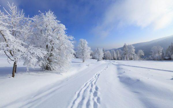 Синоптики рассказали, какой в Украине будет зима