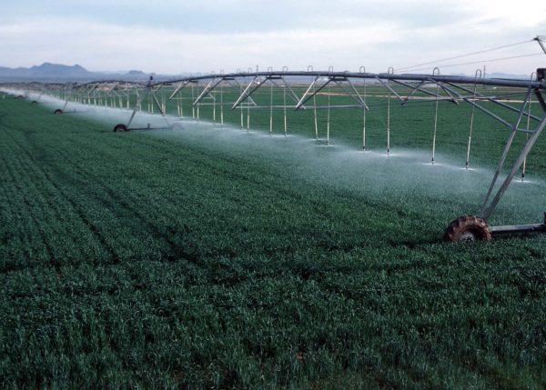 Рада одобрила законопроект о развитии систем орошения земель