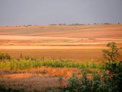 Прокуратура судится за почти 3 тысячи гектар полигона «Тарутинский»