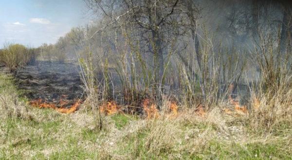 ГСЧС предупредила о чрезвычайном уровне пожарной опасности в Одесской области
