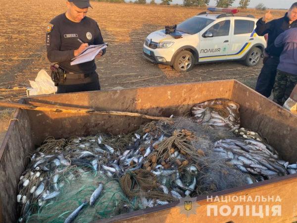 В Одесской области задержали браконьеров, которые нанесли государству урон на 1 миллион 750 тысяч гривен